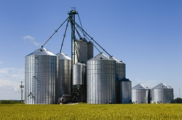 Grain Management